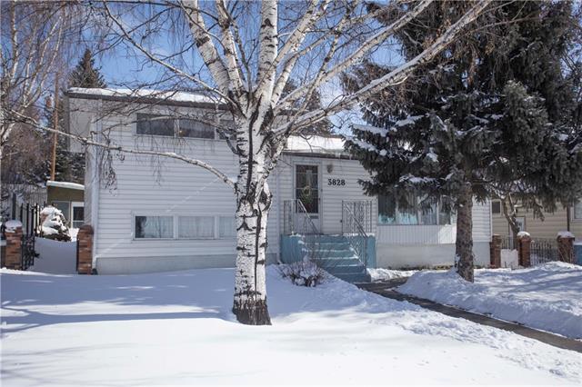 3828 14 Street NW, Calgary, AB T2K 1J4 (#C4171333) :: Redline Real Estate Group Inc