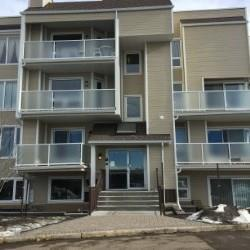 3737 42 Street NW #204, Calgary, AB T2A 2M8 (#C4172946) :: Canmore & Banff