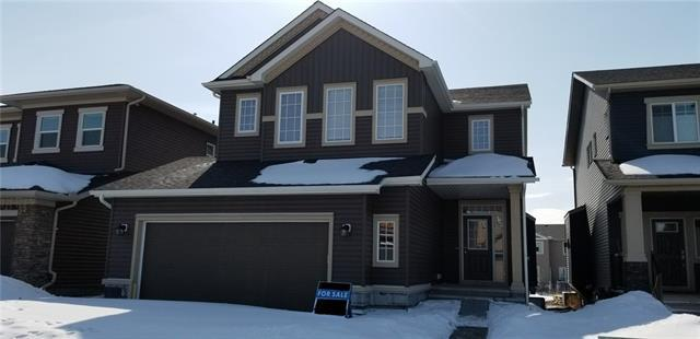 117 Ravenskirk Close SE, Airdrie, AB T4A 0T1 (#C4173987) :: Canmore & Banff