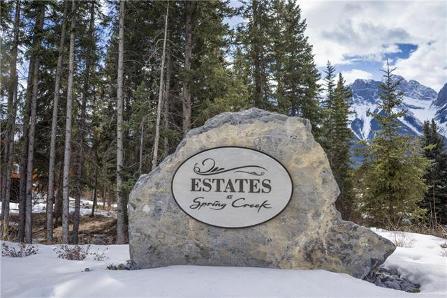 113 Spring Creek Lane, Canmore, AB T1W 0J4 (#C4176720) :: The Cliff Stevenson Group