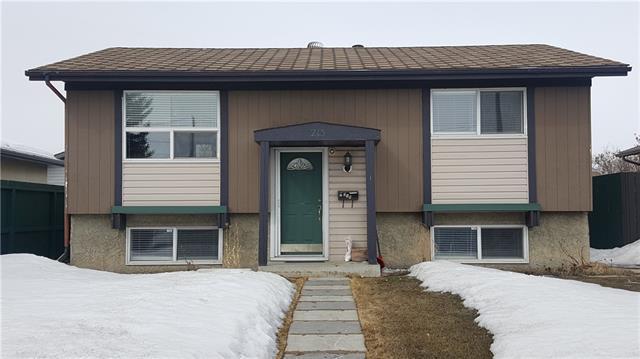 215 Malvern Drive NE, Calgary, AB T2A 5G8 (#C4177150) :: The Cliff Stevenson Group