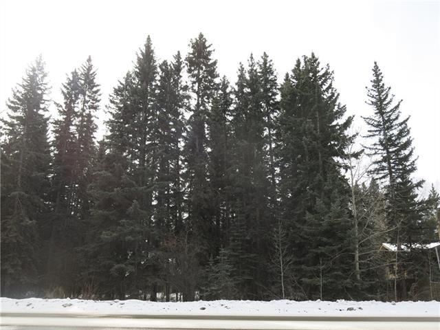 17th Street, Canmore, AB T1W 1X5 (#C4177689) :: Canmore & Banff