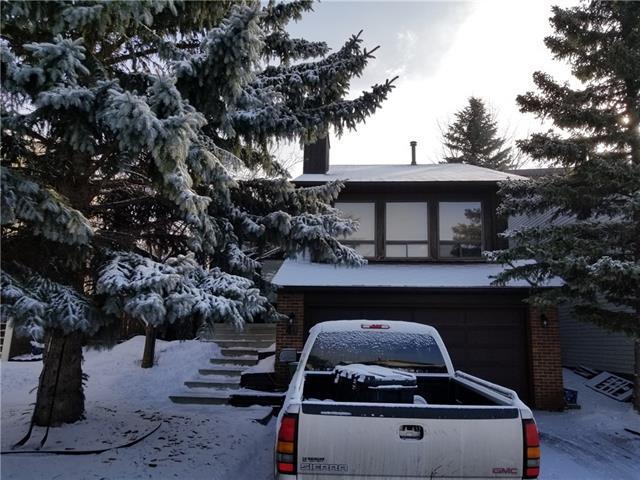 40 Ranchridge Road NW, Calgary, AB T3G 1V8 (#C4177760) :: Redline Real Estate Group Inc