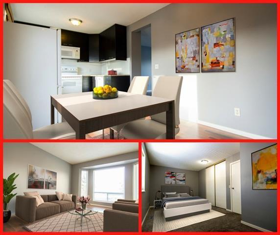 67 Martindale Boulevard NE, Calgary, AB T3J 2W5 (#C4177924) :: The Cliff Stevenson Group