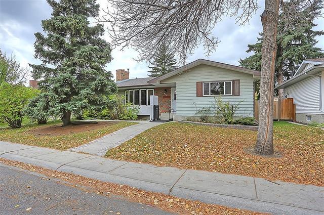 315 Whiteview Close NE, Calgary, AB T1Y 1R4 (#C4178086) :: Redline Real Estate Group Inc