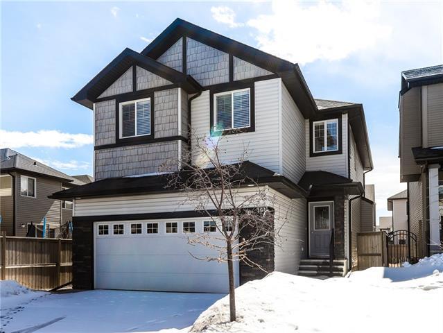 191 Skyview Shores Crescent NE, Calgary, AB T3N 0C5 (#C4178498) :: Redline Real Estate Group Inc
