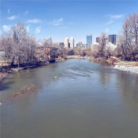 2419 Erlton Road SW #303, Calgary, AB T2S 3B8 (#C4181597) :: The Cliff Stevenson Group