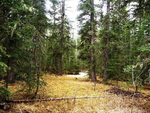 Lot 17 Lower Ridgelands, Rural Mountain View County, AB T0M 2E0 (#C4183426) :: Tonkinson Real Estate Team