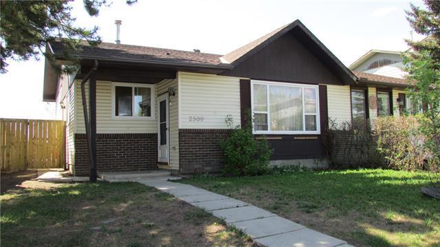 2509 62 Street NE, Calgary, AB T1Y 2M1 (#C4185321) :: The Cliff Stevenson Group