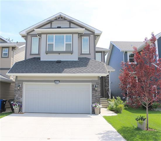 26 Auburn Springs Close SE, Calgary, AB T3M 1Y3 (#C4185484) :: The Cliff Stevenson Group
