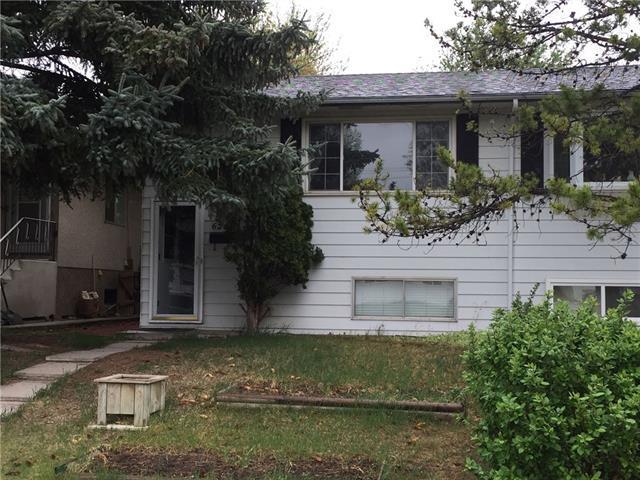 6206 17A Street SE, Calgary, AB T2C 0L8 (#C4185806) :: Your Calgary Real Estate