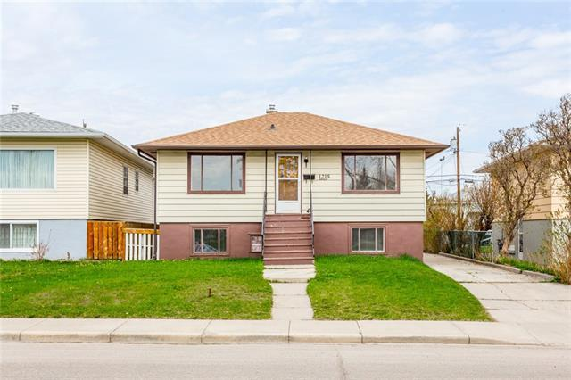 1215 Danloe Street NE, Calgary, AB  (#C4189689) :: The Cliff Stevenson Group