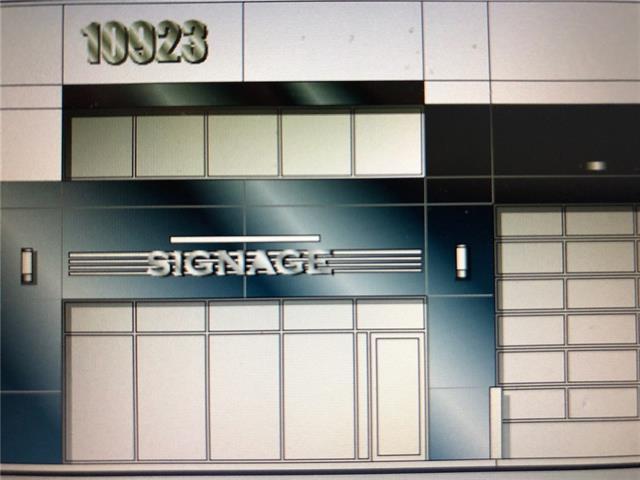 10923 38 Street NE, Calgary, AB T3N 1E7 (#C4189773) :: Carolina Paredes - RealHomesCalgary.com