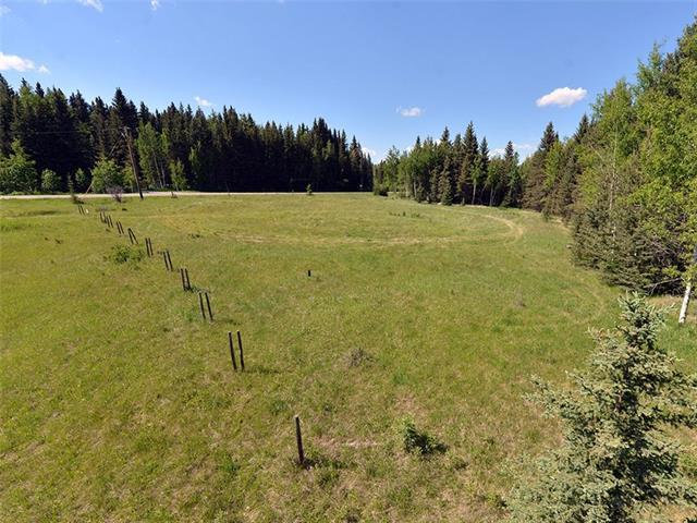 124 Mountain Lion Drive, Rural Rocky View County, AB T0L 0K0 (#C4192848) :: Tonkinson Real Estate Team