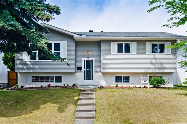 2307 51 Street NE, Calgary, AB T1Y 1C2 (#C4194881) :: Calgary Homefinders
