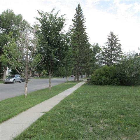 1008 7th Street SW, High River, AB T1V 1A9 (#C4195076) :: Carolina Paredes - RealHomesCalgary.com