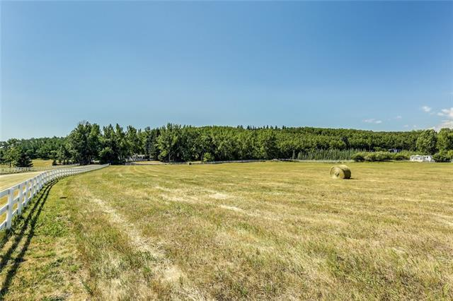 64047 198 Avenue W, Rural Foothills M.D., AB T1S 2W3 (#C4195096) :: Tonkinson Real Estate Team