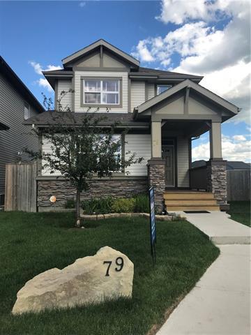 79 Skyview Springs Manor NE, Calgary, AB T3N 0A8 (#C4195398) :: Carolina Paredes - RealHomesCalgary.com