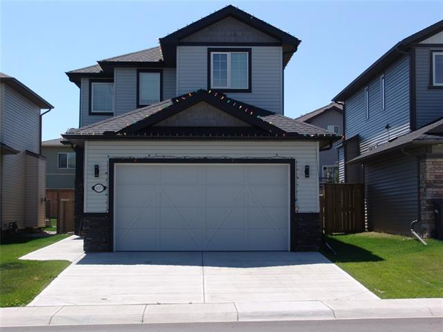 109 Wild Rose Green, Strathmore, AB T1P 0G4 (#C4195585) :: Tonkinson Real Estate Team