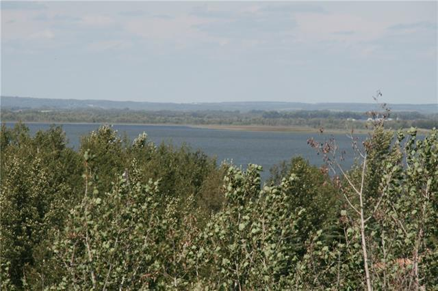4 View Place, Rural Stettler County, AB T0C 1G0 (#C4196929) :: Redline Real Estate Group Inc