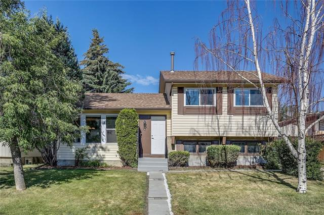 72 Whitefield Close NE, Calgary, AB T1Y 4X7 (#C4197006) :: Redline Real Estate Group Inc