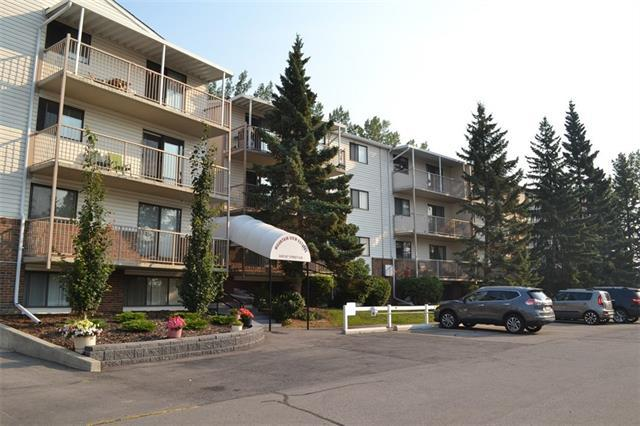 3420 50 Street NW #206, Calgary, AB T3A 2E1 (#C4199396) :: Canmore & Banff