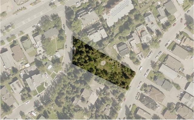 425 Muskrat Street, Banff, AB T1L 1H1 (#C4200713) :: Canmore & Banff