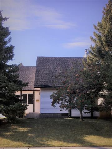 3103 107 Avenue SW, Calgary, AB T2W 2X5 (#C4202196) :: The Cliff Stevenson Group