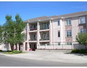 910 70 Avenue SW #202, Calgary, AB T2V 4A7 (#C4202523) :: Redline Real Estate Group Inc