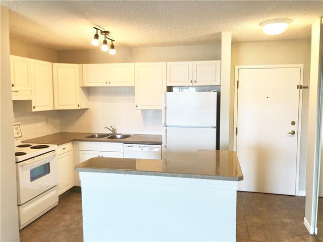 1810 11 Avenue SW #405, Calgary, AB T3C 0N6 (#C4202657) :: Redline Real Estate Group Inc