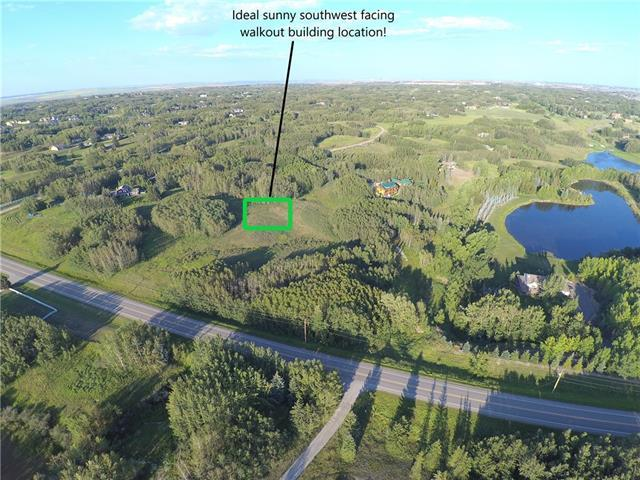 55 Bearspaw Loop, Rural Rocky View County, AB T3R 1K2 (#C4202994) :: Redline Real Estate Group Inc