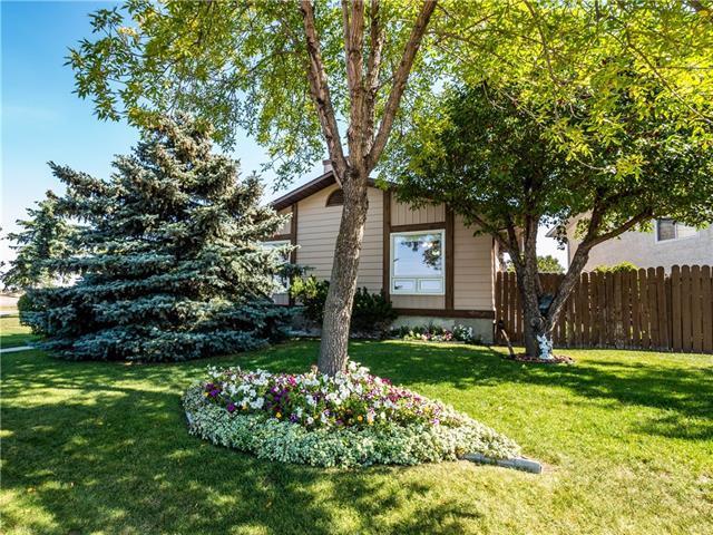 104 Templemont Circle NE, Calgary, AB T1Y 5A9 (#C4205034) :: Redline Real Estate Group Inc