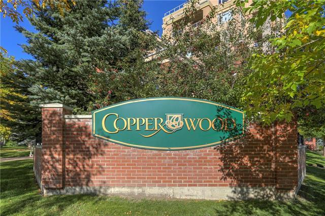 14 Hemlock Crescent SW #7106, Calgary, AB T3C 2Z1 (#C4205321) :: Canmore & Banff