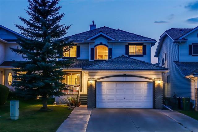 220 Coral Springs Boulevard NE, Calgary, AB T3J 3R1 (#C4205391) :: Redline Real Estate Group Inc