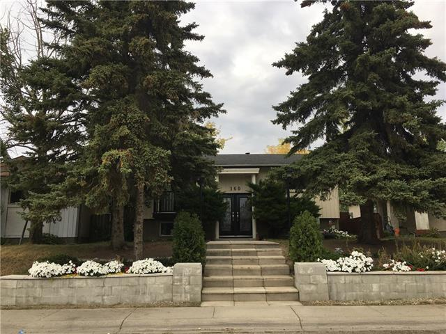 160 Malvern Drive NE, Calgary, AB T2A 5C5 (#C4205565) :: The Cliff Stevenson Group