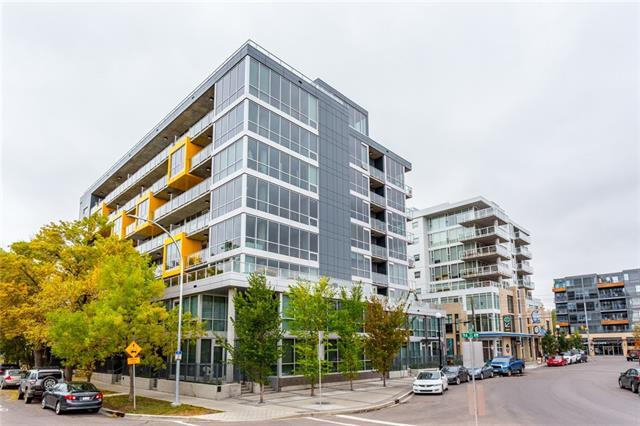235 9A Street NW #509, Calgary, AB T2N 4H7 (#C4205861) :: The Cliff Stevenson Group