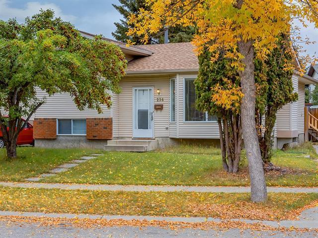 236 Woodridge Drive SW, Calgary, AB T2W 3S2 (#C4206528) :: Redline Real Estate Group Inc