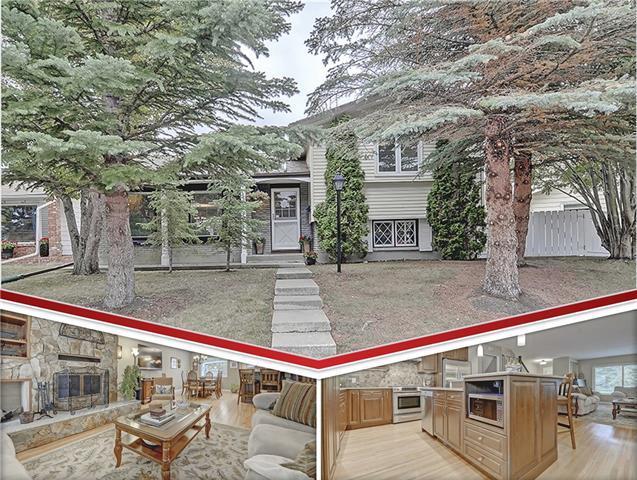10747 Mapleglen Crescent SE, Calgary, AB T2J 1X1 (#C4206571) :: Redline Real Estate Group Inc