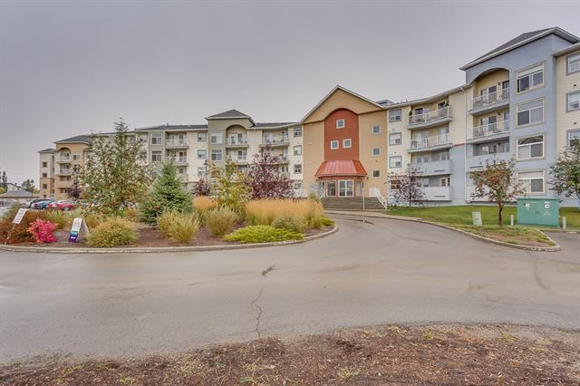 700 Willowbrook Road NW #2101, Airdrie, AB T4B 0L5 (#C4206574) :: The Cliff Stevenson Group