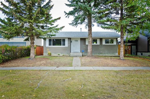 611 Maidstone Drive NE, Calgary, AB T2A 4B6 (#C4206651) :: The Cliff Stevenson Group