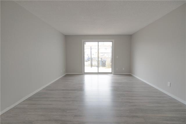 6672 Temple Drive NE, Calgary, AB T1Y 5V6 (#C4207987) :: Redline Real Estate Group Inc