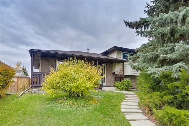 111 Pinetree Place NE, Calgary, AB T1Y 1M2 (#C4209399) :: Calgary Homefinders