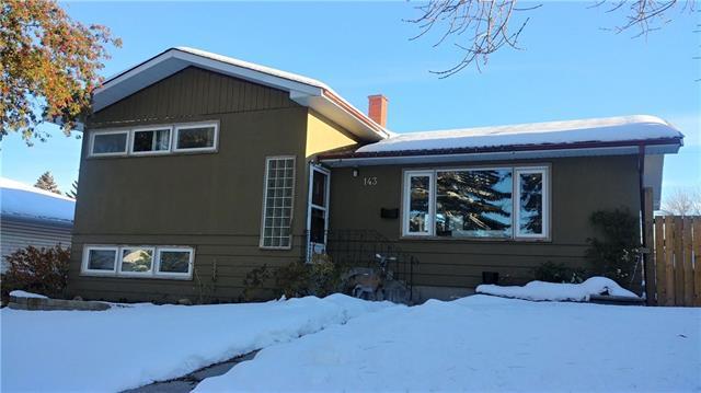 143 Ferncliff Crescent SE, Calgary, AB T2H 0V5 (#C4210438) :: Calgary Homefinders