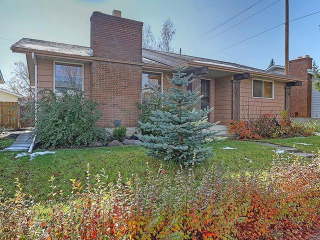 4311 44 Avenue NE, Calgary, AB T1Y 2Z8 (#C4214217) :: Redline Real Estate Group Inc