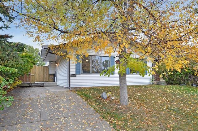 208 Templeside Circle NE, Calgary, AB T1Y 3L8 (#C4214252) :: Your Calgary Real Estate