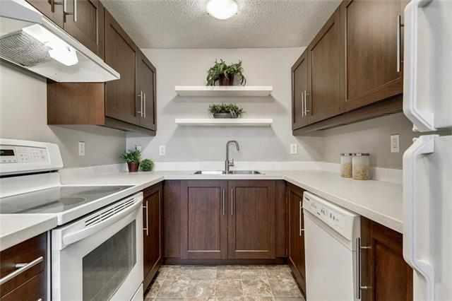 4823 60 Street NE, Calgary, AB T1Y 5B8 (#C4214423) :: Your Calgary Real Estate