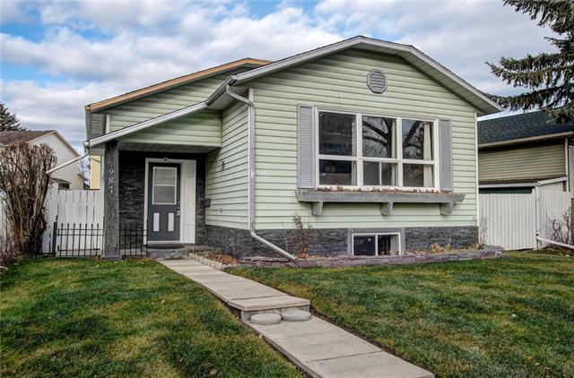 987 Mckenzie Drive SE, Calgary, AB T2Z 1S6 (#C4214690) :: Tonkinson Real Estate Team