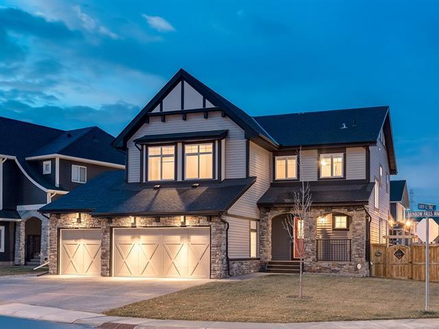 309 Rainbow Falls Way, Chestermere, AB T1X 0T1 (#C4214911) :: The Cliff Stevenson Group
