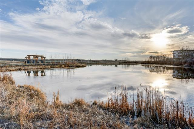 250 Fireside View #407, Cochrane, AB T4C 2M2 (#C4215029) :: Calgary Homefinders