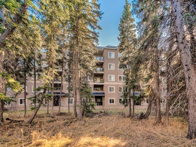 10 Discovery Ridge Close SW #206, Calgary, AB T3H 5X3 (#C4215060) :: Tonkinson Real Estate Team